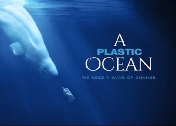 Vidéo : A plastic ocean
