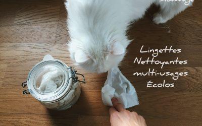 Lingettes écologiques multi-usages et réutilisables!